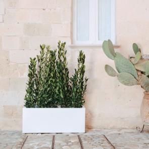 Vaso fioriera Matera  in resina rettangolare 40x104